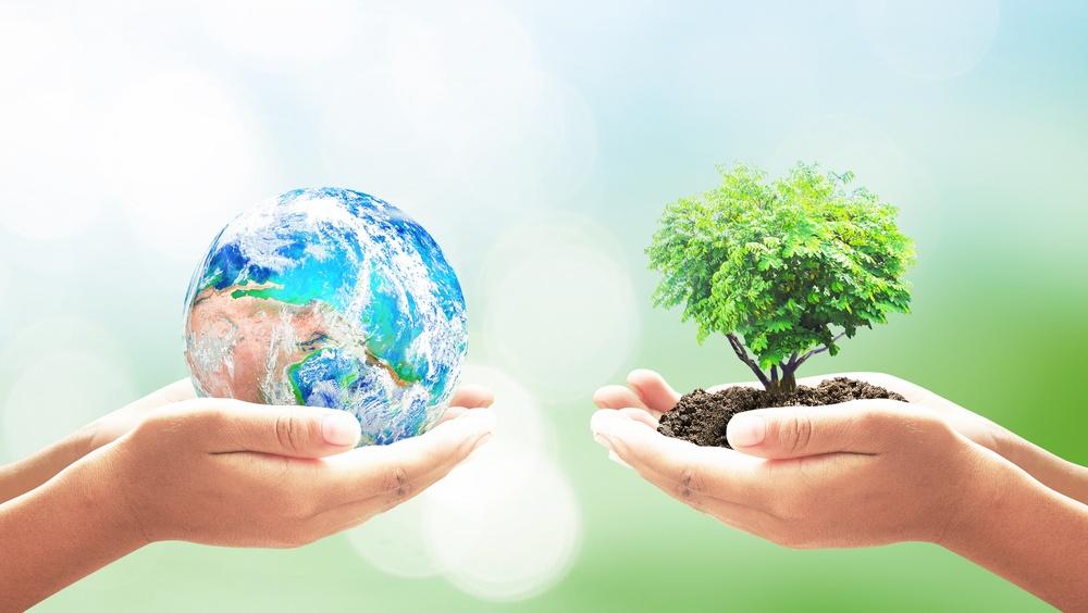 Профессиональная разработка экологической документации